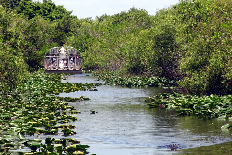 USA - Everglades - Airboat